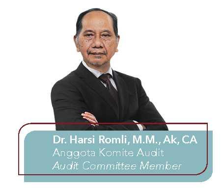 Dr. Harsi Romli, M.M., Ak, CA